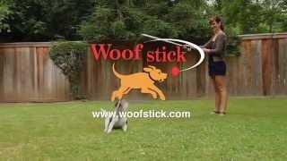 Keep Your Dog Fit And Healthy With The Woofstick