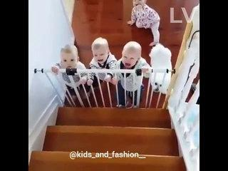 Funny , all Baby are crying ..