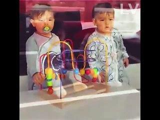 Funny Twin Baby 2017