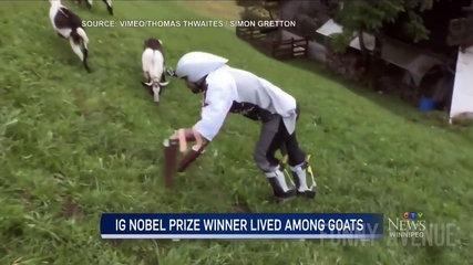 Funny News Fail Reporters Can't Stop Laughing