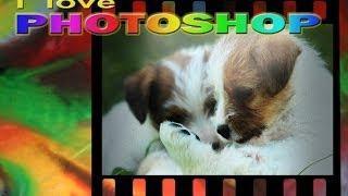 Photoshop Tutorial Italiano - Effetto May Fair