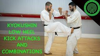 Kyokushin Karate Low Heel Kick Attacks and Combinations Tutorial