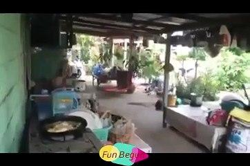 funny clips funny videos 2019 must watch