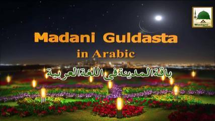 باقة المدينة المدبلجة بالعربية - علم الدين - مولانا إلياس قادري
