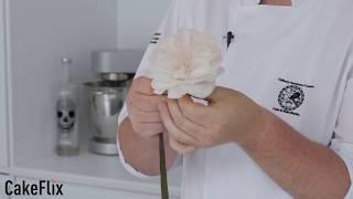 David Austin Rose Sugar Flower - Cake Tutorial in 1 minute