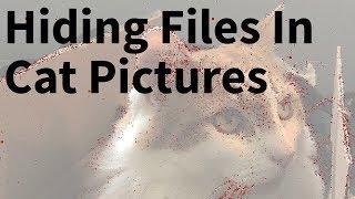 Hiding Files In Images - Kali Tutorial Steganography