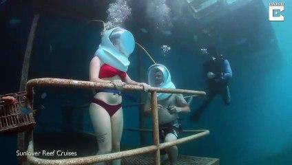 Ce couple se marie sous la mer... Magnifique