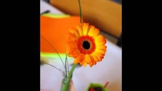 Table Decoration Idea - Orange And Lime Green - Spring&Easter Theme